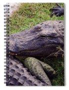 Rough Skin Spiral Notebook