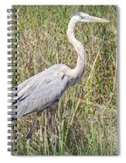 Rougning It Spiral Notebook