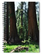 Round Meadow Sequoia Family Portrait Spiral Notebook