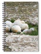Round Shot Spiral Notebook