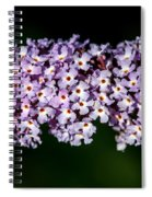 Rows And Flows Of Angel Flowers Spiral Notebook
