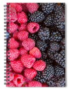 Rows Of  Berries  Spiral Notebook