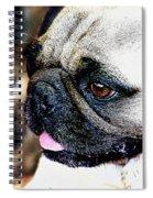 Roxy The Pug Spiral Notebook