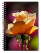 Royal Colors Spiral Notebook