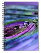 Soul Reflections Spiral Notebook