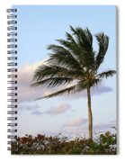 Royal Palm Tree Spiral Notebook