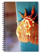 Royal Walnut Moth Spiral Notebook