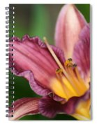 Royalty Spiral Notebook