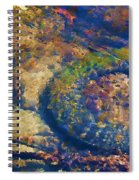 Rubber Fish Spiral Notebook