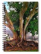 Rubber Tree Spiral Notebook