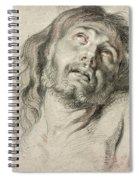 Rubens, Christ.  Spiral Notebook