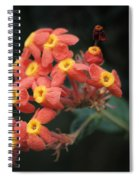 Rubiaceae Spiral Notebook