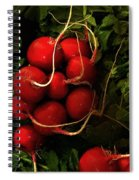 Rubies From The Field Spiral Notebook