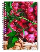 Rubies Organic Spiral Notebook