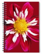 Ruby Glow Spiral Notebook