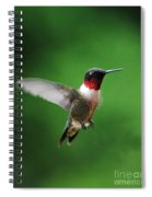Ruby Red Throated Hummingbird Spiral Notebook