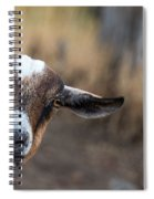 Ruby The Goat Spiral Notebook