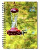 Ruby-throated Hummingbird 2 - Impasto Spiral Notebook