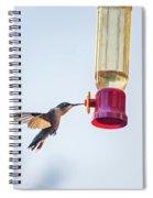 Ruby-throated Hummingbird 5 Spiral Notebook