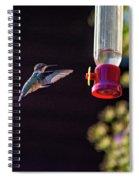 Ruby-throated Hummingbird Spiral Notebook