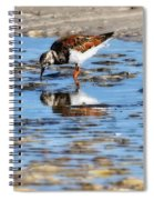 Ruddy Reflection Spiral Notebook