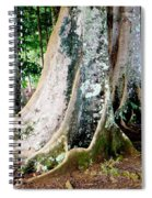 Rudraksha 1 Spiral Notebook