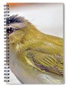 Ruffed Up Spiral Notebook