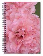 Ruffled Pink Rose Spiral Notebook