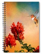 Rufous Dream Spiral Notebook
