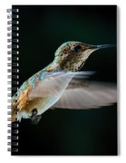 Rufous Spiral Notebook