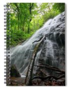 Rufus Morgan Falls Spiral Notebook