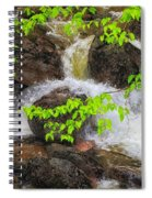 Rugged Landscape Spiral Notebook