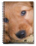 Ruler Of My Heart Spiral Notebook