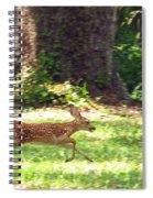 Run Bambi Run Spiral Notebook