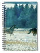 Run With The Wind Spiral Notebook