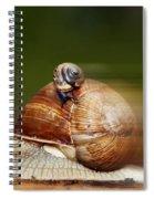 Runaway Snail Spiral Notebook