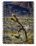 Running Man, Death Valley Spiral Notebook