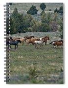 Running Wild Horses  Spiral Notebook