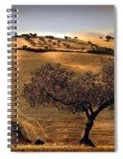 Rural Spain View Spiral Notebook
