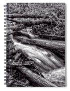 Rushing Stream - Bw Spiral Notebook