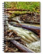 Rushing Stream Spiral Notebook
