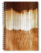Rust 03 Spiral Notebook