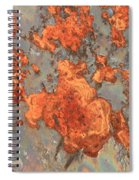 Rust Art Spiral Notebook