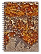 Rust On A Pipe Spiral Notebook