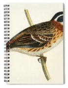 Rustic Bunting Spiral Notebook