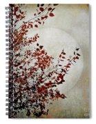 Rustic Moon Spiral Notebook