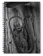 Rustic Old Horn Spiral Notebook