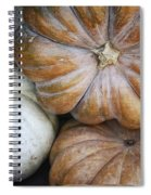 Rustic Pumpkins Spiral Notebook