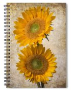 Rustic Sunflowers Spiral Notebook