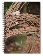 Rusty Barb Spiral Notebook